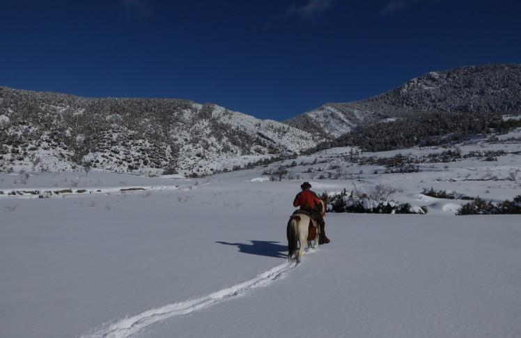 ruta a cavall pel pirineu